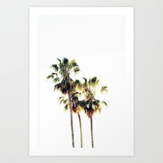 The Palms No. 3 Art Print
