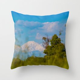 Out Standing in a Field Throw Pillow