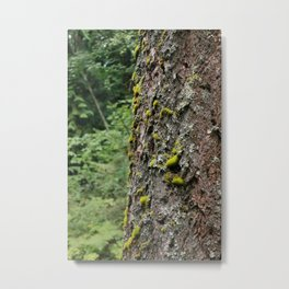 Green Nature Metal Print