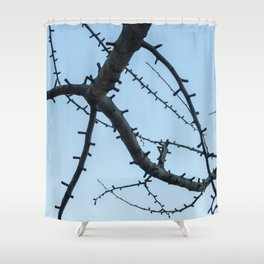 Beautiful Ginkgo Biloba branches Shower Curtain