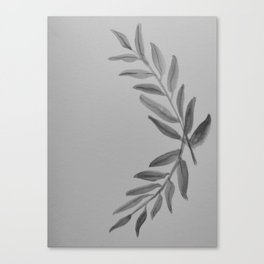 Olive Branch   Leaves - Black and White Canvas Print