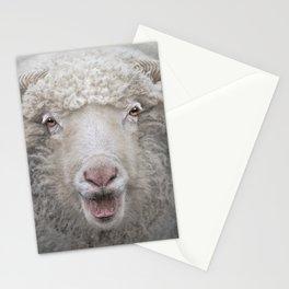Oh Sol e Mio....La la la la!!!!!!! Stationery Cards
