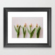 Four Tulips Framed Art Print