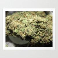 marijuana Art Prints featuring Marijuana by Ryan Gillings