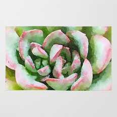 Spring Succulent Rug