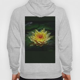 Yellow water lily Hoody