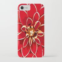 dahlia iPhone & iPod Cases featuring Dahlia by Saundra Myles
