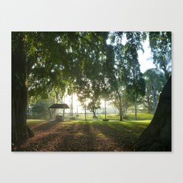 Misty Morning- Queens Park, Maryborough QLD Canvas Print