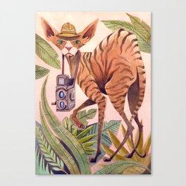 Safari Sphynx Canvas Print