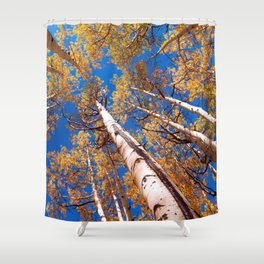 Aspen Trees Against The Sky In Crested Butte, Colorado Shower Curtain