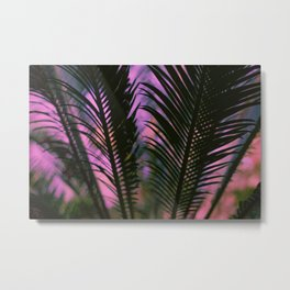 Sunset Palm Leaf Metal Print