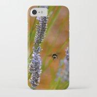 butt iPhone & iPod Cases featuring bumblebee butt by Lisa Carpenter