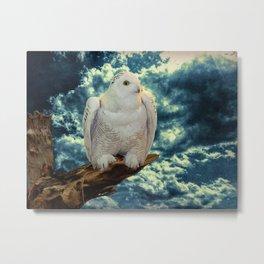 Snowy Owl against Aqua Sky Country Decor A147 Metal Print