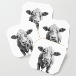 Highland Cow Portrait | Animal Photography | Black and White | Art Print Minimalism | Farm Animal Coaster
