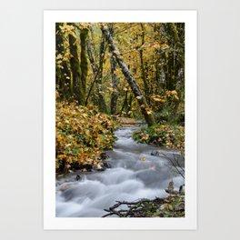 Tillamook In The Fall Art Print
