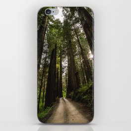 Redwoods Make Me Smile - Nature Photography iPhone Skin