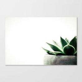 Simply Succulent Canvas Print