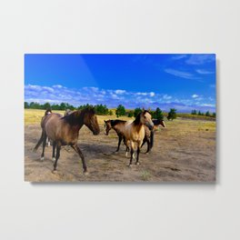 Happy Horses Metal Print
