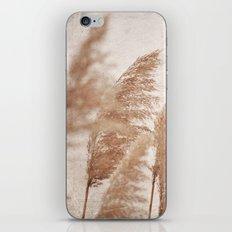 Wind in the Meadow iPhone & iPod Skin