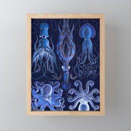 Haeckel Octopi Framed Mini Art Print