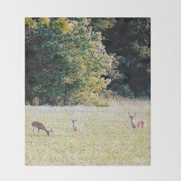 Whitetail Bucks Throw Blanket