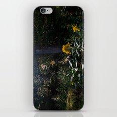 Cynefin. iPhone & iPod Skin