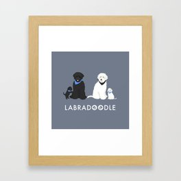 Labradoodle black and white Framed Art Print