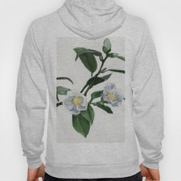 Out On A Limb Hoody