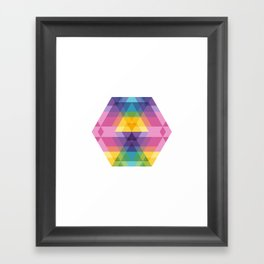 Fig. 023 Framed Art Print