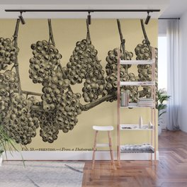 American grape growing and wine making (1885) Wall Mural