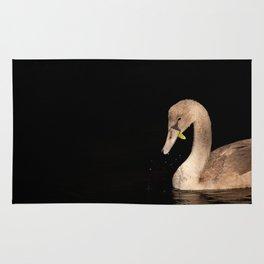 Young Swan Rug