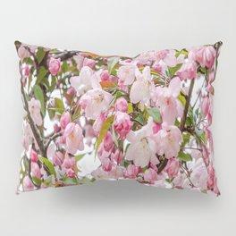 Tree in Blossom Pillow Sham