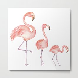 Caribbean Flamingos Watercolour Metal Print