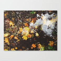 Detail of autumnal leaves and rain in a puddle. Norfolk, UK Canvas Print