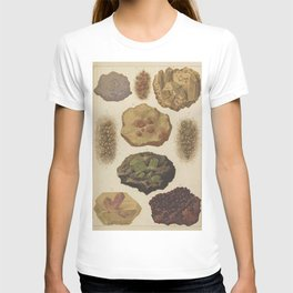 Gems And Minerals T-shirt
