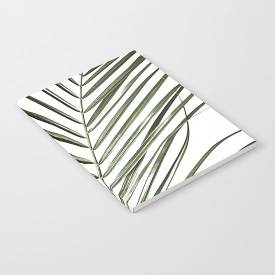 Palm Leaves 8 by maboe