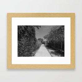 Fire Island Framed Art Print
