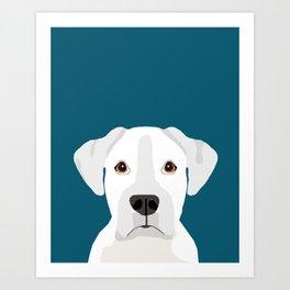 White Boxer pet portrait cute dog lover rescue dog lover Boxers portrait dog breeds Art Print
