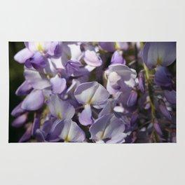 Close Up Of Lavender Wisteria Blossom Rug