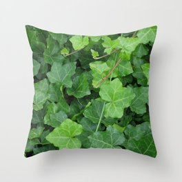 Creeping Ground Cover Throw Pillow
