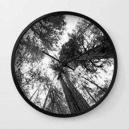 Muir Woods - California Wall Clock