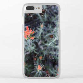 Desert Brushes (Woolly Indian Paintbrush) Clear iPhone Case