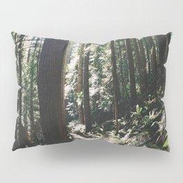 Happy Trails II Pillow Sham