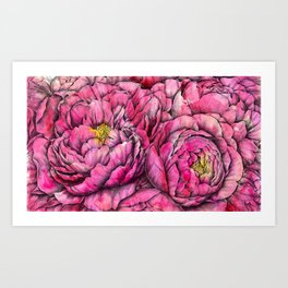 Peonies three pink Art Print