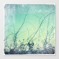 sea plants (teal) Canvas Print