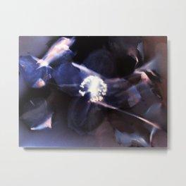 Play of Light Metal Print