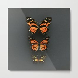 Orange Butterflies Metal Print