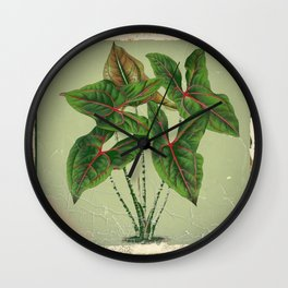 Grungy antique style  Botanical Art Wall Clock