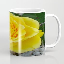 Head On View Of A Yellow Rose With Garden Background Coffee Mug