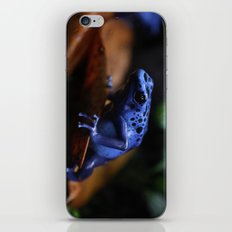 Blue Poison Dart Frog Azureus iPhone & iPod Skin